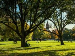 Image of students on campus during fall